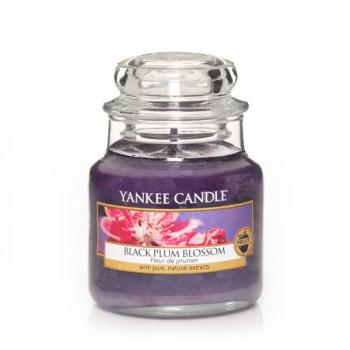 Bougie Yankee Candle Black Plum Blossom - Petite Jarre